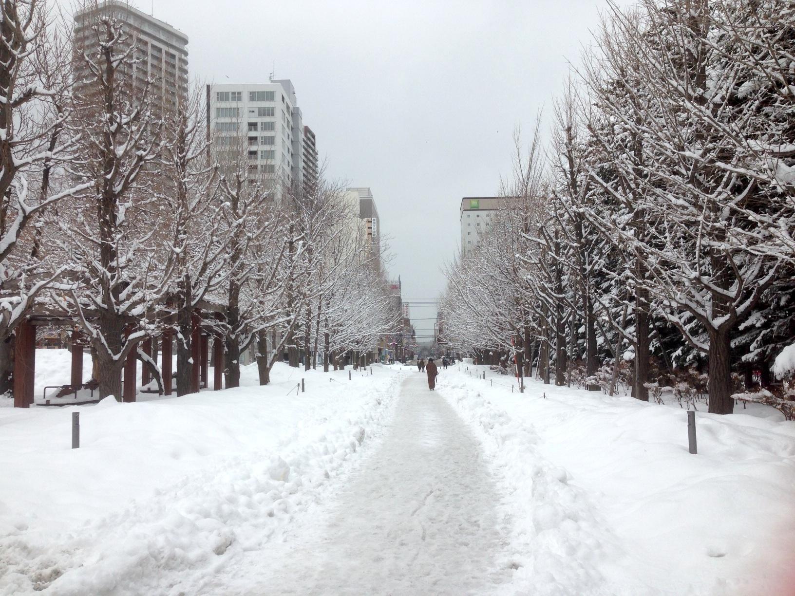 雪景色2016.2月