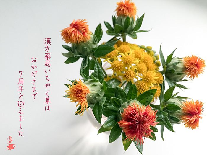 紅花 開店7周年