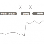 周期ケア 基礎体温表
